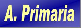 A.Primaria